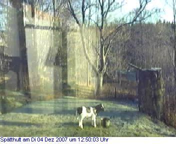 Das Schneewettenbild aus Spätthult für den 04. Dezember 2007