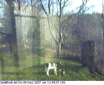 Das Schneewettenbild aus Spätthult für den 06. Dezember 2007