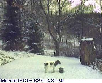 Das Schneewettenbild aus Spätthult für den 15. November 2007