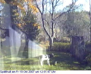 Das Schneewettenbild aus Spätthult für den 19. Oktober 2007